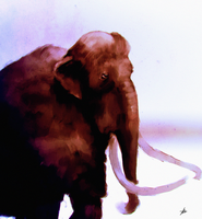 Woolly Mammoth by chadlindall