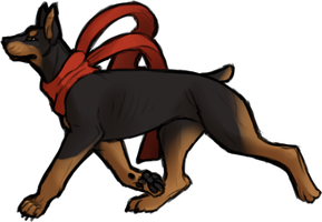 Doberman by mute-owl