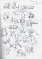 Gorilla Movement studies by ronaika
