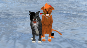 Me and my friend having fun together by warriorcatsfann