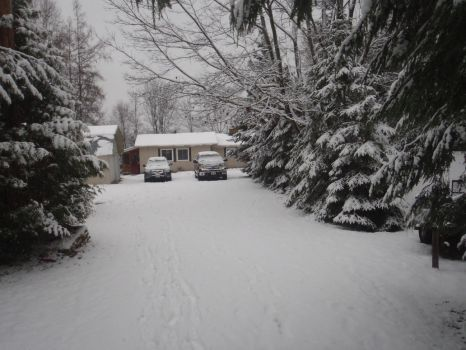 My Cottage As Of November 9 2014 by JackWolf1998