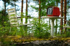 Television! Making the forrest better place! by pixelmadness