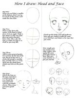 How I Draw Faces and Heads by SeraphimFeathers