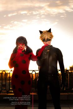 Chat Noir and Ladybug- Duo by twinfools
