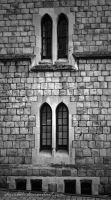 Castle Windows by sheiabah