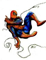 The Amazing Spider Man by superjabba425