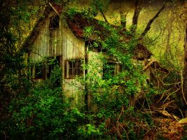 Little Cottage 2 by thescreamingid