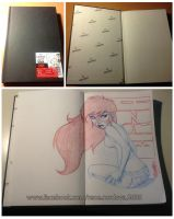 NEW SKETCHBOOK by renecordova