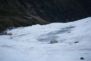 New Zealand Stock 2012 - 37 by BloodRedBrumby