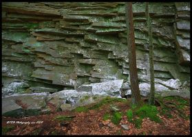 The Wall by TRBPhotographyLLC