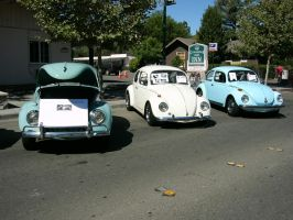 Three VW Beetles All In A Row by RoadTripDog