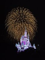 Cinderellas Castle at Night:21 by CanisCamera