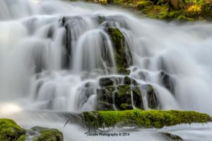 1374 Pearsoney Falls 2 by ainsliehubert