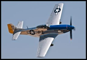 Planes of Fame 23 by AirshowDave