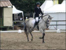 Lamotte.Beuvron.2008_X by Lec3H-All