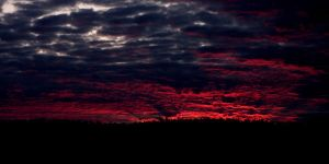 Bleeding Sky. by Dark-and-Dreamless