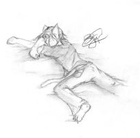 This is how I sleep... by ShadowPaladin