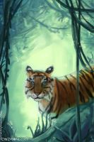 Tiger in forest by konekonoarashi