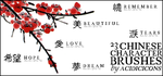Chinese Character Brushes by acidicicons