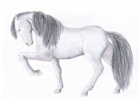 Lusitano horse: drawing by Katy500