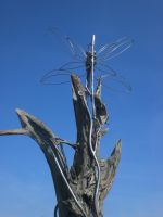 Dragonfly on Driftwood II by theforgery