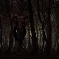 Woodland Creature by Pete-B