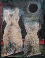 2 cats and no moon by nicolecurcis