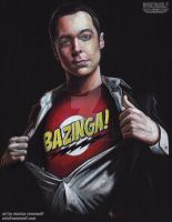 It's A Bird....It's A Plane....BAZINGA!! by The-Art-of-Ravenwolf