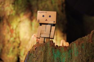 Danbo wood sprite ............ by Yuffie1972