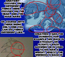 Sonic Anatomy Guide Part 3 by ARTic-Weather