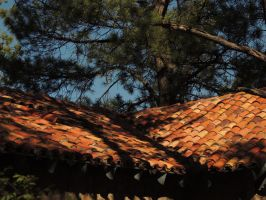 Roof tiles by Barn0wl