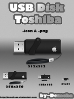 USB Disk Toshiba by DemchaAV