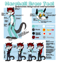 The ultimate Teal ref sheet by Heiin