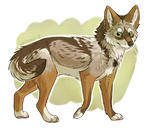 brush wolf by whitepup