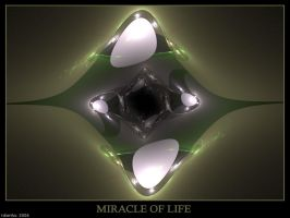 Miracle of Life by tdierikx
