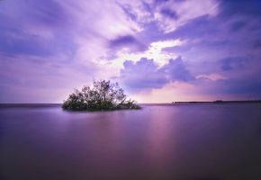 small  mangrove island by 5-zal