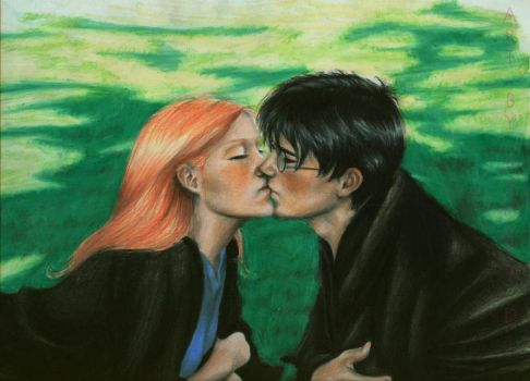 harry and ginny in the shade by shley77