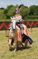 Kenilworth Castle Joust 2014 (64) by masimage