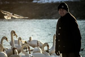 Man with swans by petkau