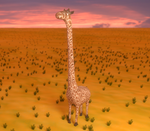 The tall Giraffe by Voleuro
