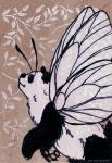 black-veined panda ACEO by belyaal