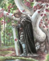Ned Stark by Brokensicario