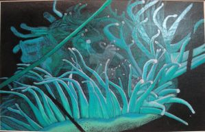 Sea Anemone by AtlasiaInk