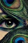 eyes of the peafowls by sadsolitude