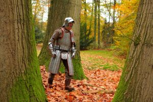 Steel hexagon plate lamellar armour (finished) by Armourdillo
