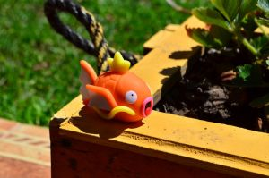 Magikarp Clay Tutorial by CraftDragons