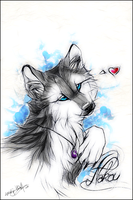 .:Nakou:. by WhiteSpiritWolf