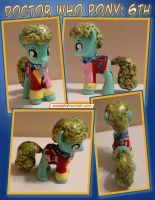 Doctor Who Pony - 6th Doctor by HeyLookASign