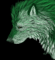 Envy Wolf by Esaki