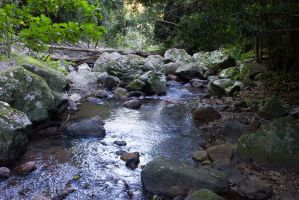 STOCK - Springbrook 2012 021 by fillyrox